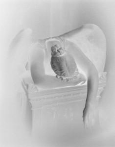 Untitled (Angel of Grief) © Jared Ragland