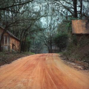 Mud © Vicki Wilson Hunt