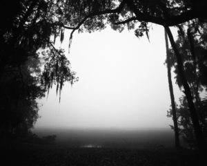 Canewater Farm Fog, Darien, Georgia 2015 Ansley West Rivers